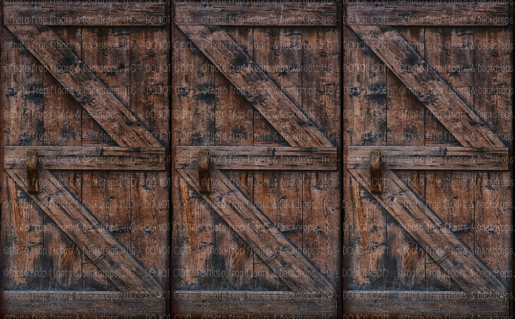 Door 229 (Horizontal Design)