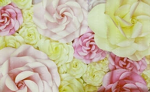 Paper Flowers 22