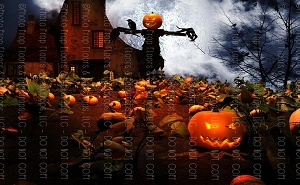 Halloween 40 (Horizontal Design)