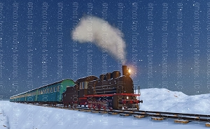 Polar Express 5 (Horizontal Design)