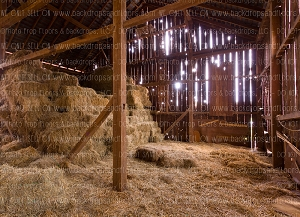 Barn Indoor 2 (Horizontal Design)