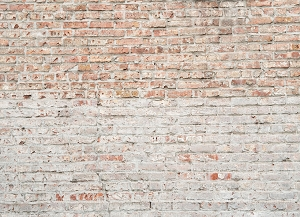 Brick 329 (Horizontal Design)