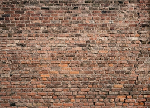 Brick 344 (Horizontal Design)