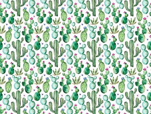 Cactus 2 (Horizontal Design)