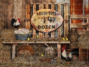 Farm Fresh Eggs 2 - 80x60 (Horizontal Design)