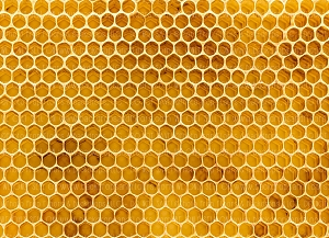 Honey Comb 2