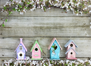Bird Houses 1 (Horizontal Design)