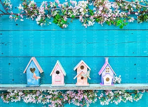 Bird Houses 2 (Horizontal Design)