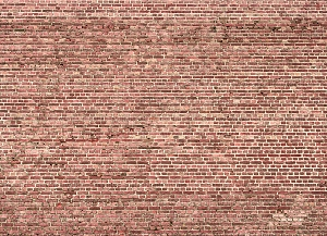 Brick 229 (Horizontal Design)
