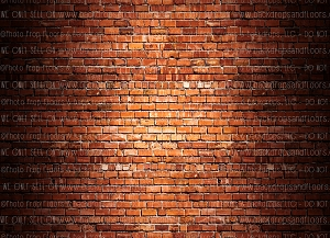 Brick 267 (Horizontal Design)