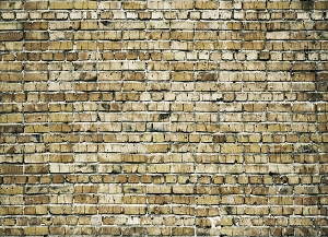 Brick 281 (Horizontal Design)