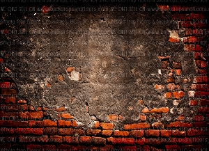 Brick 298 (Horizontal Design)