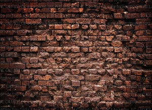 Brick 300 (Horizontal Design)