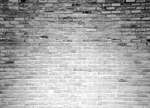 Brick 309 (Horizontal Design)