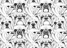 Bulldog Print 1  (Horizontal Design)