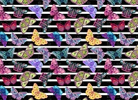 Butterflies 3 (Horizontal Design)