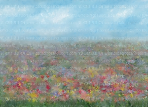Painterly Confetti Field (Horizontal Design)