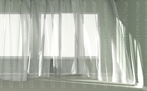 Curtain 5  (Horizontal Design)