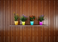 Flower Pots 8 (Horizontal Design)