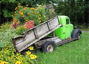 Flower Truck (Horizontal Design)