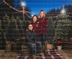 Christmas Tree Farm/Snow Forest Backdrops
