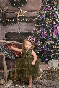 All (Indoor & Outdoor) Christmas/Christmas Tree Backdrops