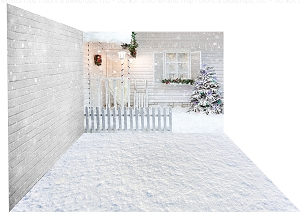 Holiday 1244 (Backdrop: 8x10 Sweatshirt Material) Snow 12 (Floor: 8x10 Non-Skid Floormat) Brick 206 (Right Wall: 8x8 Sweatshirt Material)