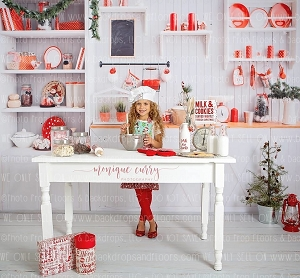 ALL Christmas Inspired & Winter Backdrops