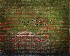 Moss Brick Wall - 8x10 (Horizontal Design)