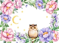 Owls 7 (Horizontal Design)