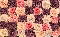 Paper Flowers 57