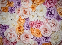 Paper Flowers 68 (Horizontal Design)