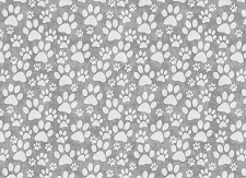 Paw Prints 8 (Horizontal Design)