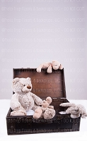 Vintage Teddy Bears 5