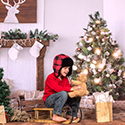 Christmas & Winter Themed Backdrops
