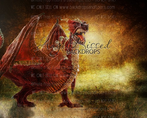 Fighting The Dragon - 8x10 Polyester (Horizontal Design)