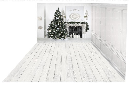 Holiday 1097 (Backdrop: 8x10 Fleece Material) Wood Floor 1110 (Floor: 8x10 Non-Skid Floormat) Panel 5 (Right Wall: 8x8 Fleece Material)
