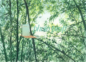 Bamboo Forest 1 MINI DROP 29x40
