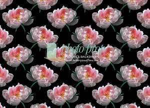 Floral 447 (Horizontal Design)