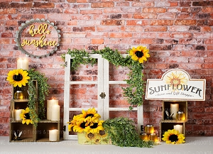 Hello Sunshine (Horizontal Design)