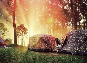 Camping 7 (Horizontal Design)